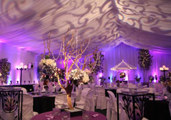 Order Indoor Weddings