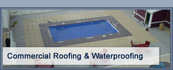 Order Waterproofing Services