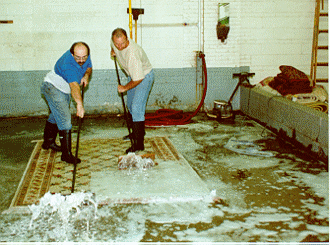 Order Rug Washing by Hand