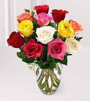 Order 1 Dozen Mixed Color Roses