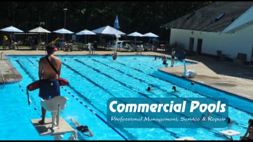 Order Swimming Pool Management Services