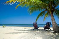 Order Honeymoon Vacation