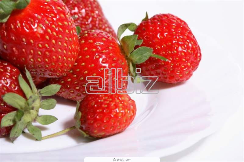Order Fall Raspberries