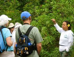 Order A Classic Ecotour Hosted by Indigenous People tour