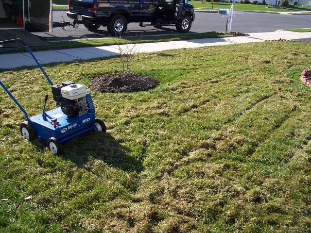 Order Lawn Dethatching