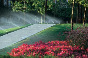 Order Irrigation Services