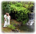 Order Sland Waterfall Wedding