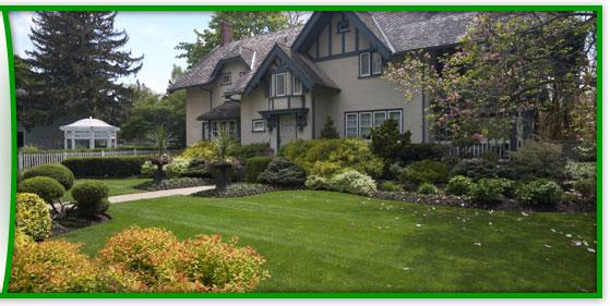 Order Landscape Installation & Landscape Design