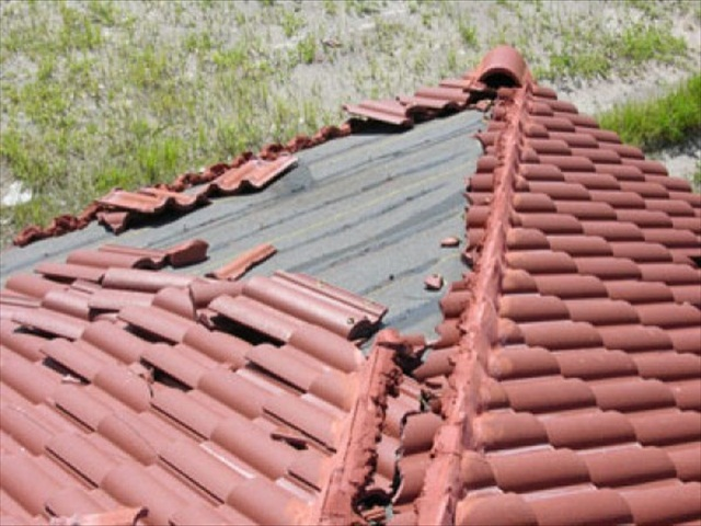 Order Roof Maintenance Program