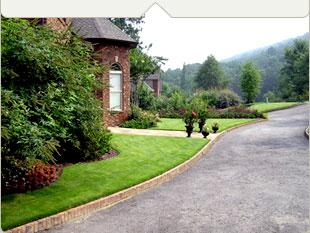Order Landscape designs