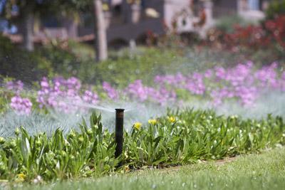 Order Sprinklers and Irrigation