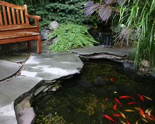 Order Ponds & Water Gardens