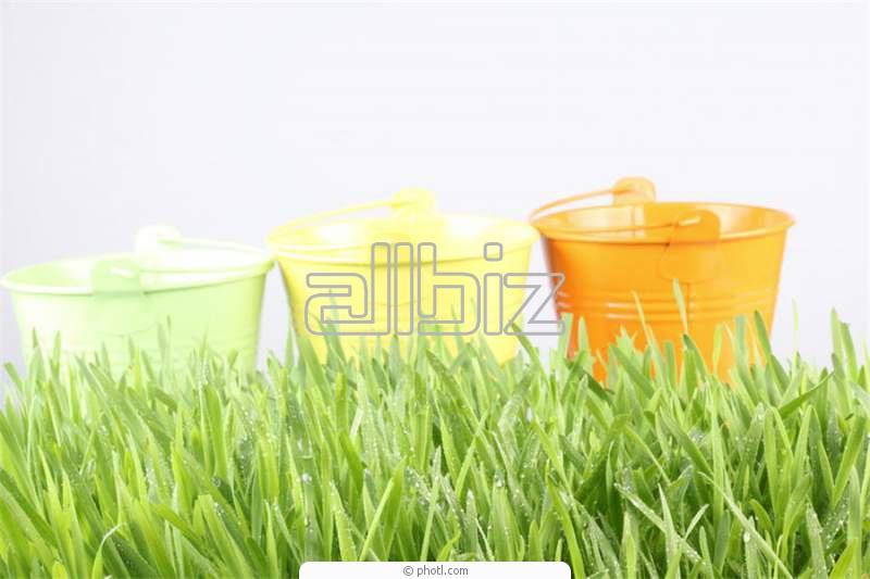 Order Irrigation system