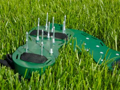 Order Lawn Aeration