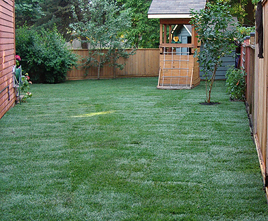 Order Lawn Installation
