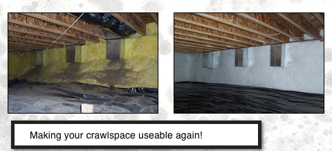 Order Crawlspace Services