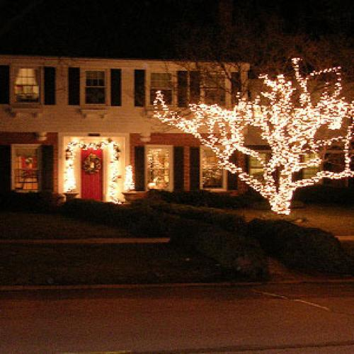 Order Holiday Lighting