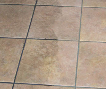 Order Tile & Grout Cleaning