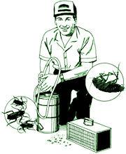 Order Roach Treatments