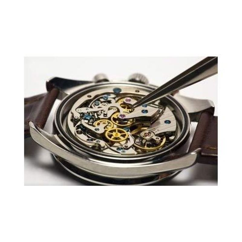 Order Watch repairing services