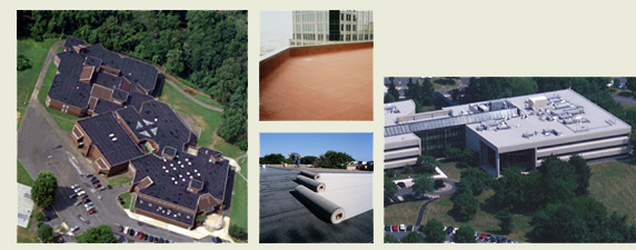 Order Built Up Roofing Services