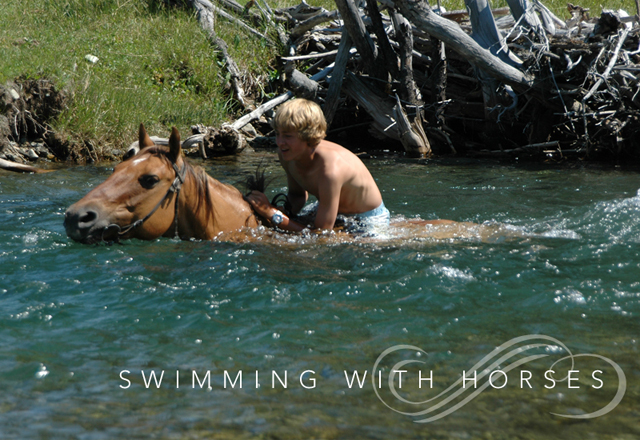 Order Swimming with Horses