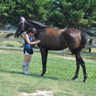 Order Horseback Riding Private Lessons