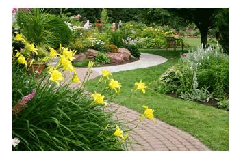 Order Landscape Design, Constraction, Maintenance