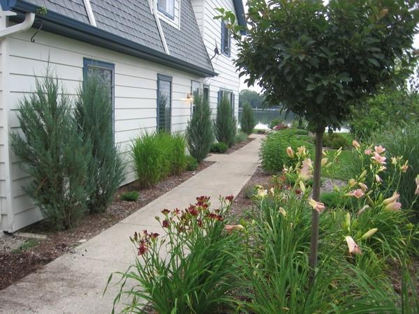 Order Tree and shrub care