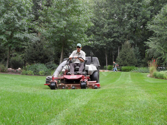 Order Weekly Lawn Care