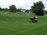 Order Fertilizer and Weed Control