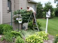 Order Pruning and Yard Work
