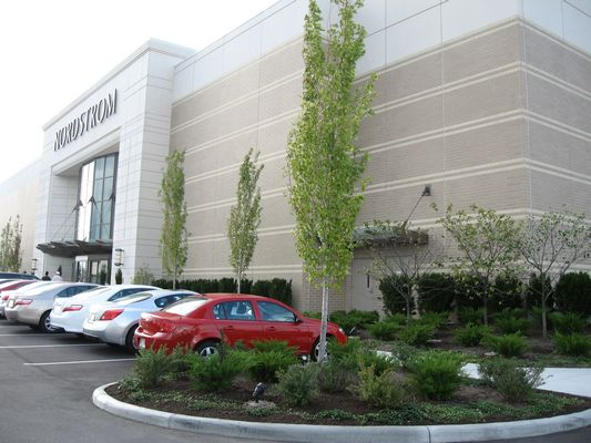 Order Commercial Landscape and Maintenance