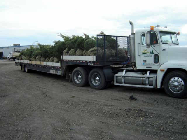 Order Delivery / Planting Service