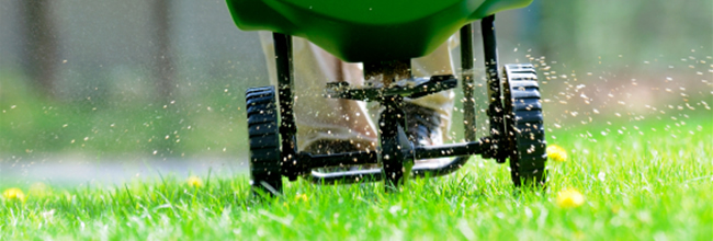Order Lawn Fertilization