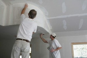 Order Mold Damage Restoration