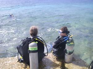 Order Dive Travel