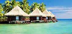 Order Luxury Travel