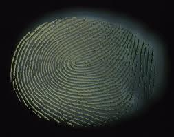Order Fingerprinting Solutions