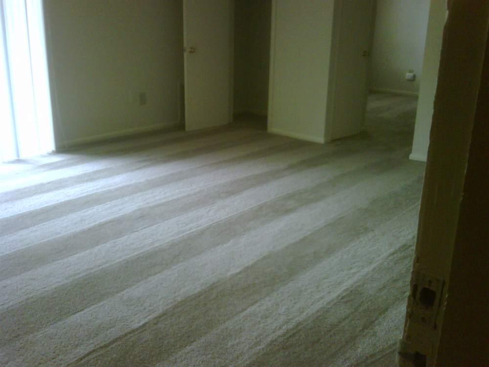 Order Carpet Repairs