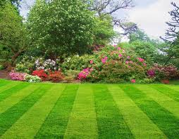Order Landscaping Services