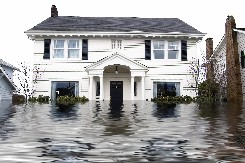 Order Water Damage Restoration