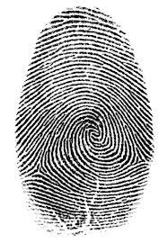 Order Fingerprinting Service