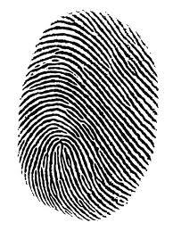 Order Fingerprinting Services