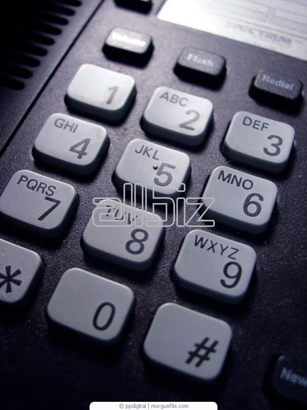 Order Phone System Services