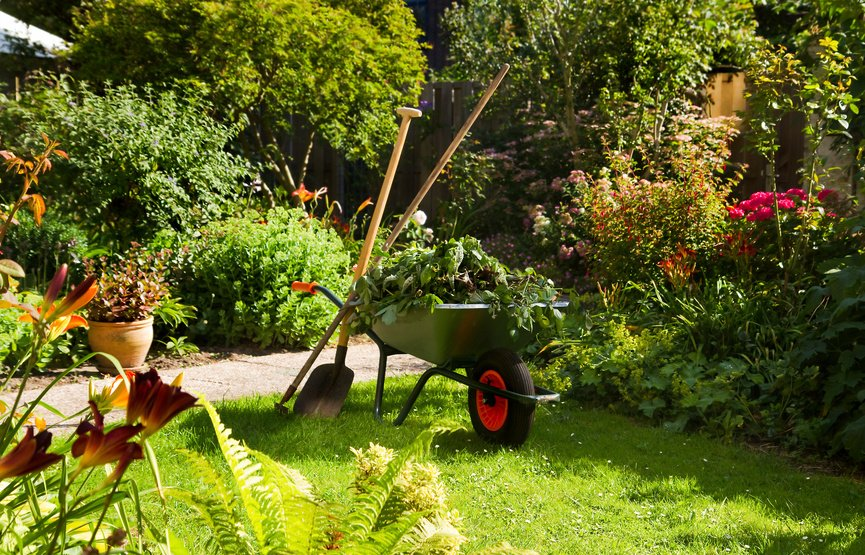 Order Residential & commercial Gardening Services