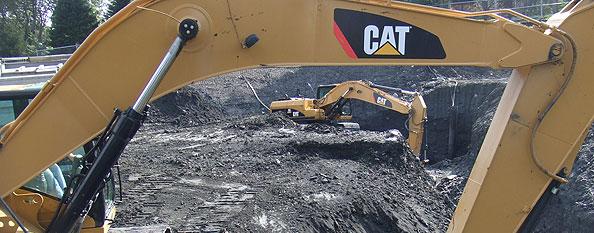 Order Excavatory
