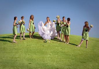 Order Weddings & Receptions
