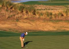 Golf at Ford Plantation