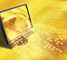 Enterprise Resource Planning Systems (ERP)